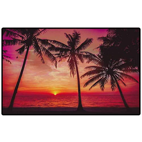 RenteriaDecor Outdoor Rug Sunset Tropical Beach. Beautiful Sunset Carpet for Front Porch/Kitchen/Farmhouse/Entryway