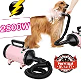 2800W Pet Professional Grooming Hair Dryer, Two Grear Adjustable Speed Dog Blower, Low