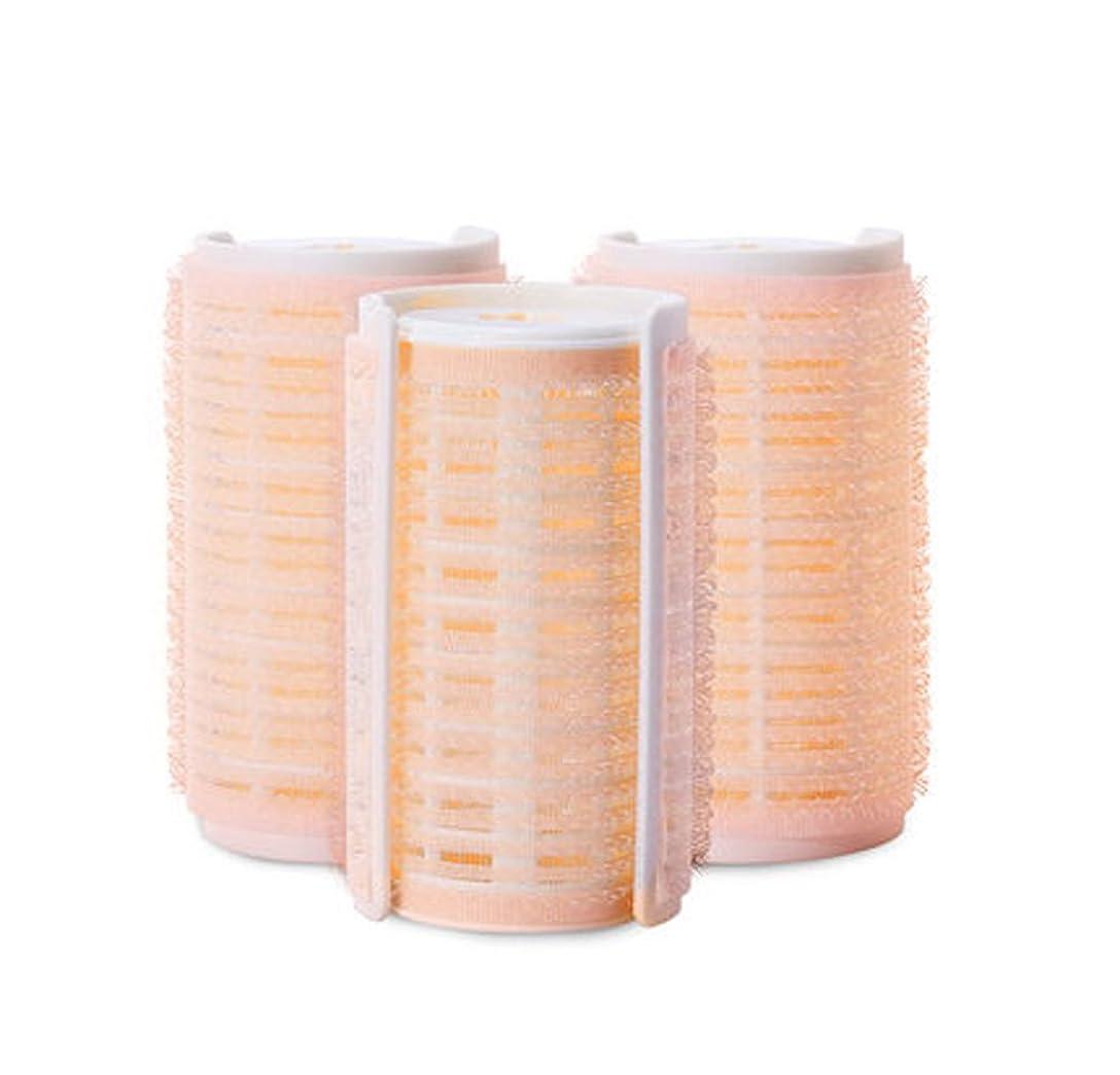 オーバーフローコーデリア話すプラスチック製のDIYグリップ粘着ヘアローラーカーラーヘアドレス、3ピース-W1