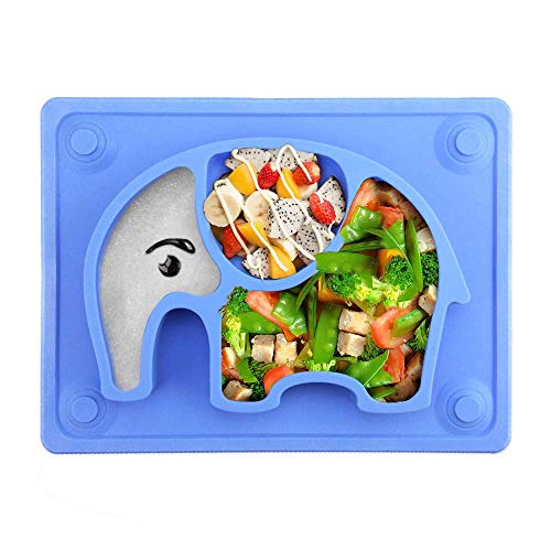 Product Image of the Silivo Suction Cup Plate