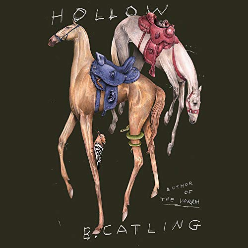 Hollow Audiobook By Brian Catling cover art