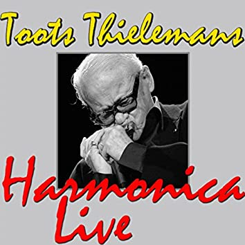 Toots Thielemans Harmonica (Live)