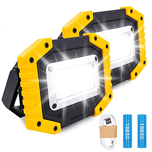Trongle LED Rechargeable Work Lights, 30W Portable Work Light Battery Security Light with 3 Modes Outdoor COB Camping Lights with USB Waterproof for Garage, Fishing, Hiking, 2 Packs (Battery Included)