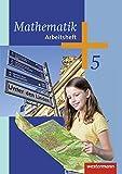 Mathematik - Ausgabe 2014 für die 5. Klasse Sekundarstufe I: Arbeitsheft 5: Sekundarstufe 1 - Ausgabe 2014