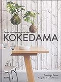 Kokedama: Plantas sin recipientes para el hogar