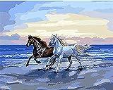 Pintura por números para niños y principiantes kit de pintura pintura acrílica de alta calidad pintura al óleo (sin marco) - caballo