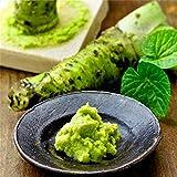 TENGGO Egrow 300Pcs/Pack Wasabi Semillas Mostaza Rábano Picante Wasabi Vegetales Jardinería doméstica Plantación para Plantas perennes Hardy