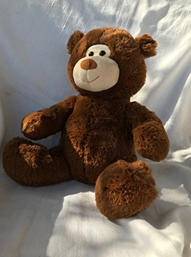 "Arc4life Chiropractic Cuddly Soft Teddy Bear ChiroBear, 12"" Brown Bear, Adjust-A-Bear, Chiropractic Office Toy, Teddy Bear with a Spine- Best Chiropractor Gift"