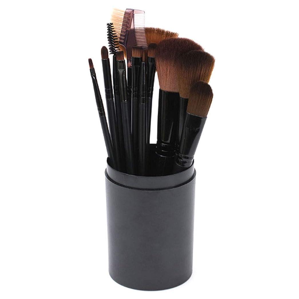 一見不毛の目を覚ます[RADISSY] メイクブラシ 化粧筆 フェイスブラシ 12本 セット 専用 ケース 付き (ブラック)