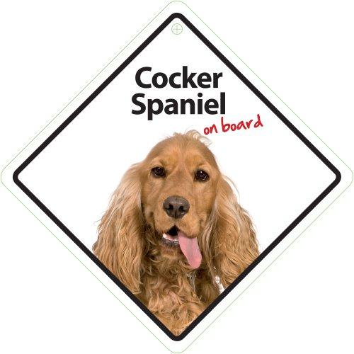 Magnet & Steel Cocker Spaniel on Board