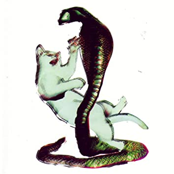 Cat and the Cobra