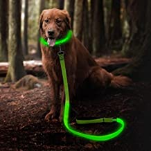 Clan_X led Dog Leash, USB Rechargeable Dog Leash Glowing in Dark, Dog Strip Light up at Night, 47.2 inch 120 cm Dog Leash Keep Your Dog Safe in Darkness