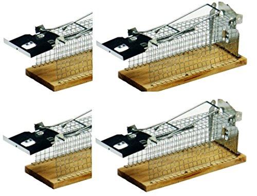 Hillfield® 4er Set Lebendfalle für Mäuse & kleine Ratten - Tierfreundliche Falle mit Schwanzschutz - Draht-Kastenfalle aus Metall & Holz - Mäusefalle Lebend Mausefalle Rattenfalle