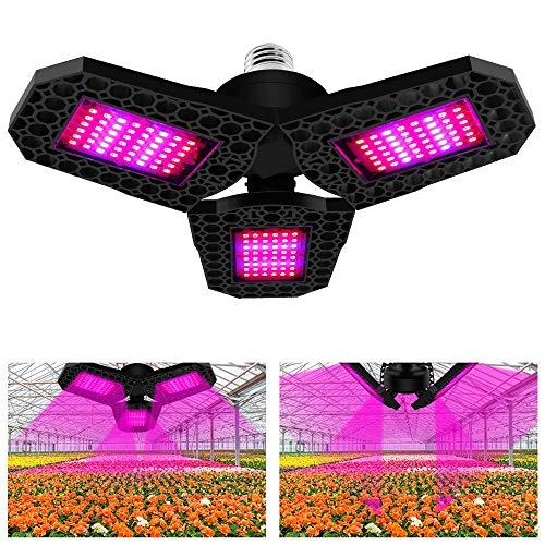 LED Pflanzenlampe,144 LEDs Grow Lampe, Pflanzenlampe Fächerform 90° Dimmbar Pflanzenlicht, Rot & Blau Vollspektrum Pflanzen Wachstumslampe für Zimmerpflanzen Gewächshaus Bonsais Gemüse und Blumen