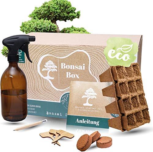 Bonsai Starter Kit I Dein eigener Bonsai I 3 berühmte Bonsai Samen für deinen selbst gezüchteten Bonsai Baum I inkl. Bonsai Zubehör und Sprühflasche I Das nachhaltige Bonsai Set I Bonsai züchten