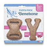Benebone Puppy Dog Chew Toy