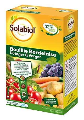 Solabiol SOBB20800 Bouillie Bordelaise 800g-Traitement Mildiou, Tavelure Cloque | Utilisable en Agriculture Biologique, Colorée Bleue