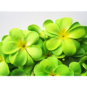 (24) Green Hawaiian Plumeria Frangipani Silk Flower Heads – 3″ – Artificial Flowers Head Fabric Floral Supplies Wholesale Lot for Wedding Flowers Accessories Make Bridal Hair Clips Headbands Dress