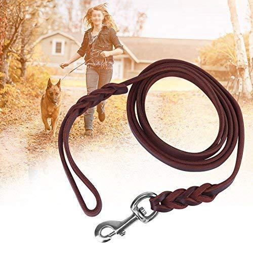 HEEPDD Hunde Leine,Hochleistungs Hundeleine aus Leder für das Hunde Training Geflochtene Hunde Leine für mittel große und große Hunde für das Gehtraining (1.6m)