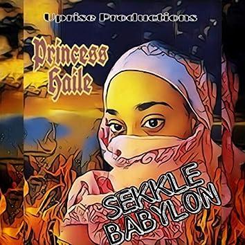 Sekkle Babylon