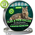 Cat Flea Treatment | Cat Collar | Flea and Tick Collar for Cats | 8 Months Effective Protection | Waterproof -Adjustable -Fits for Small Medium Large Pets | Puppy Collar | Flea Treatment Cat by Vienapoli