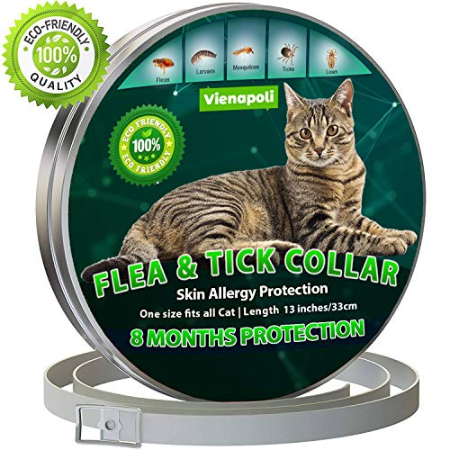 , collar antiparasitario gatos mercadona, saloneuropeodelestudiante.es