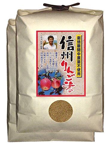 【新米】【玄米】信州りんご米 こしひかり 10kg(5kg×2) 令和2年産
