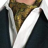 STTLZMC Cravatta Uomo Paisley Floreal Ascot Fazzoletti Tessuto in Seta Matrimonio Business...