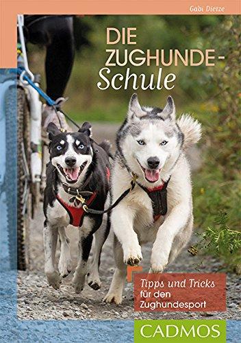 Die Zughundeschule: Tipps und Tricks für den Zughundesport