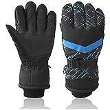 HUO ZAO Men Winter Snow Ski Gloves (Upgraded Black/Blue)