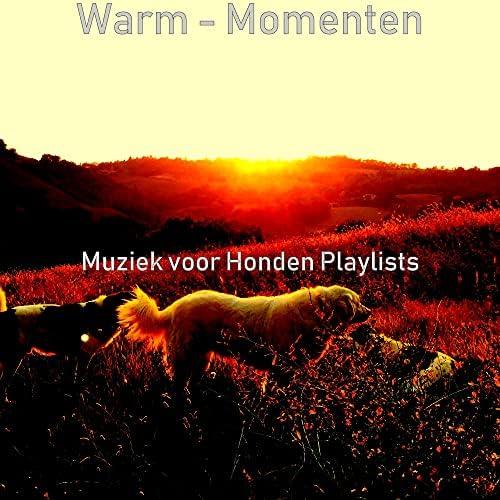 Muziek voor Honden Playlists