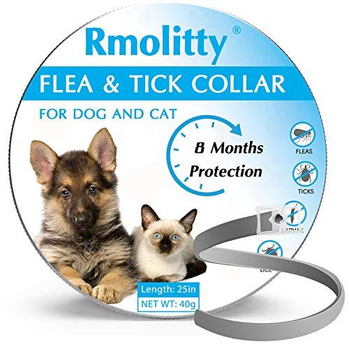 Collare Antipulci e Antizecche Per Cani, Trattamento Antipulci Agli Oli Essenziali Naturali, 8 Mesi Di Protezione Collare Antipulci Impermeabile Per Cani, Per Cani Di Taglia Piccola, Medio e Grande
