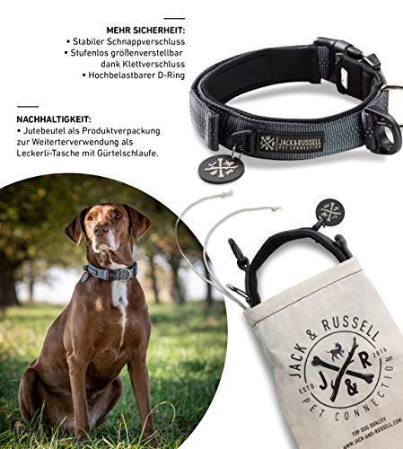 Jack & Russell Premium Hundehalsband Milu - Klettband - reflektierend - Neopren gepolstert - Hunde Halsband div. Größen und Farben - Milu (L(43-58 cm), Grau)