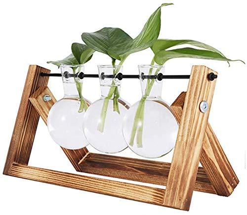 Vandove Hydroponik Vase, Hängevase Pflanzenvase Glasvase Planter Bulb Vase, Blumenvase Tischvase Dekovase Deko Holz Halte, für Home Garden Office Dekoration (3 Vasen)