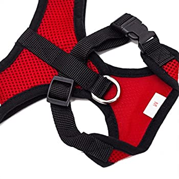 Locisne Mesh Tissu Dog Vest Harnais souple réglable confortable | Pet Chest Lead Walking Leash avec clip (Rouge, Medium)