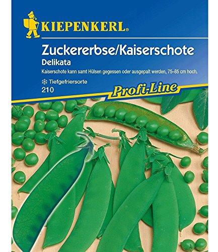 Sperli Gemüsesamen Zuckererbsen Delikata, grün
