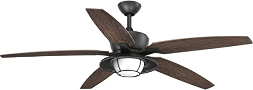 discount Progress Lighting P2564-8030K Protruding Mount, 5 sale Toasted Oak outlet online sale Blades Ceiling fan with 18 watts light, Forged Black sale