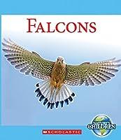 Falcons (Nature's Children)