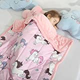 HAOWANER Minky Toddler Weighted Blanket 3lbs, Soft Baby Weighted Blanket for Toddler, Kids Weighted Blanket 3 Pounds, 3lb Weighted Blanket for Toddler, Crib Weighted Baby Blanket for Child, Unicorn