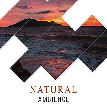 # Natural Ambience