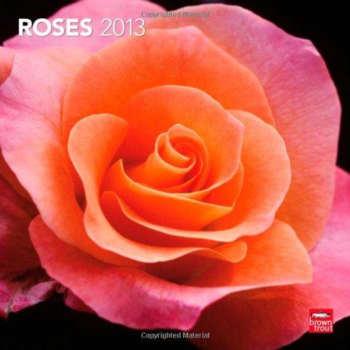 Roses 2013 - Rosen - Original BrownTrout-Kalender