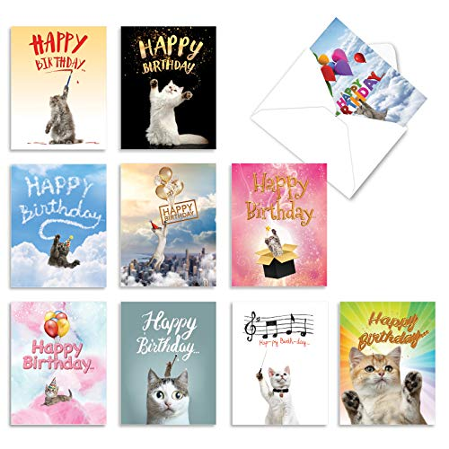 The Best Card Company - 10 Happy Birthday Note Cards Blank - Assorted Bulk Birthday Notecards, Cute Animals Boxed Set (4 x 5.12 Inch) - Cat Sent Greetings AM6112BDB-B1x10