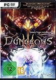 Dungeons 3 [PC] Für Windows 8/10