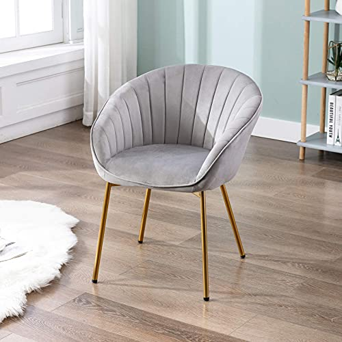 Wahson Velvet Accent Chair for Bedroom Armchair with Golden Metal Legs Tub Chair for Living Room/Vanity
