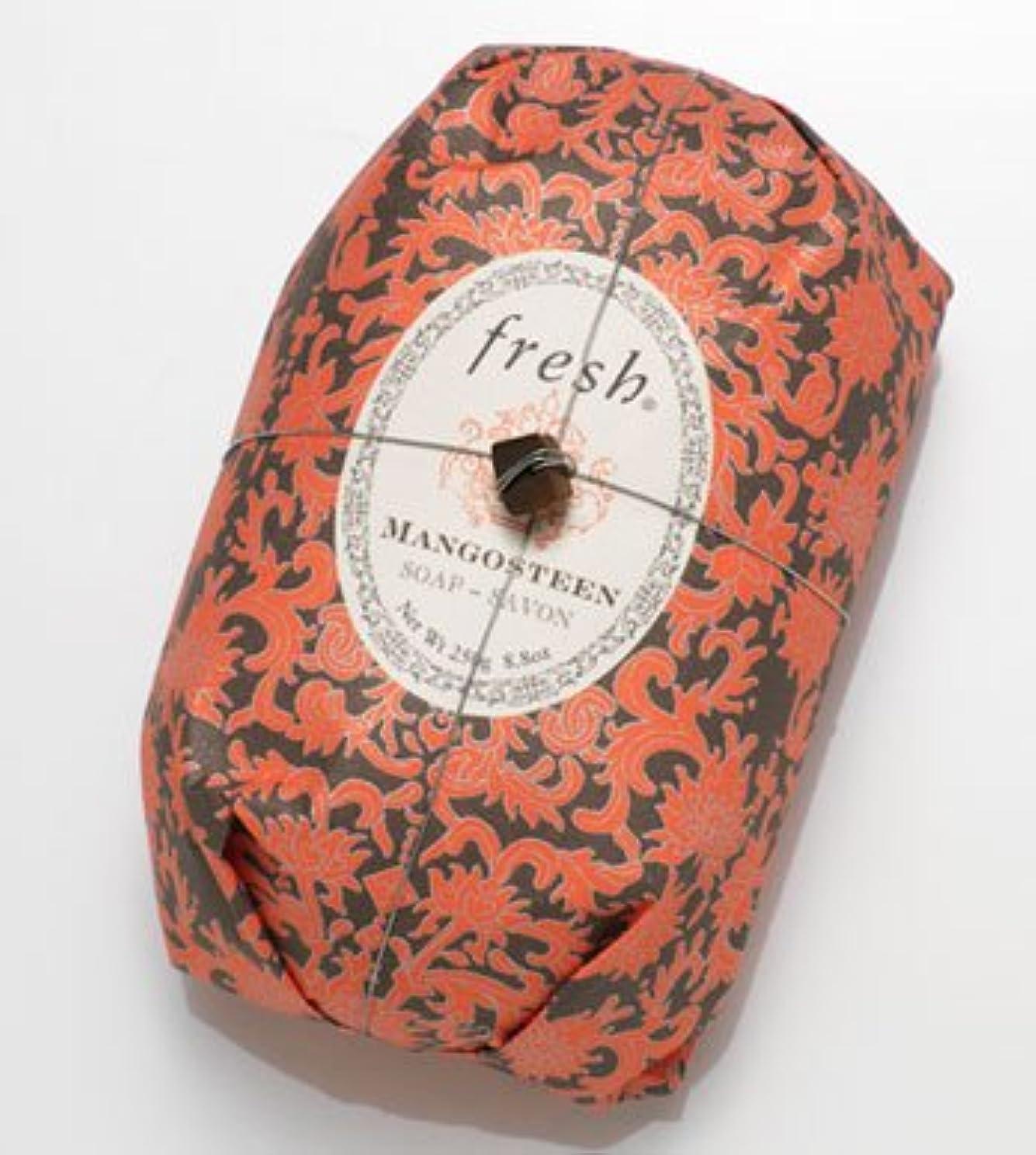 稚魚憲法に負けるFresh MANGOSTEEN SOAP (フレッシュ マンゴスチーン ソープ) 8.8 oz (250g) Soap (石鹸) by Fresh