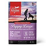 ORIJEN Dog Large Breed Puppy Recipe, 13lb, High-Protein Grain-Free Dry Puppy Food, Packaging May Vary