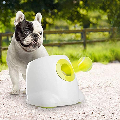ALL FOR PAWS Hyperfetch Ultimate Throwing Toy Interactive Automatic Ball Launcher Dog Toy, Tennis Ball Throwing Machine for Dog Training, 3 Balls Included (Mini Style) with European Adapter