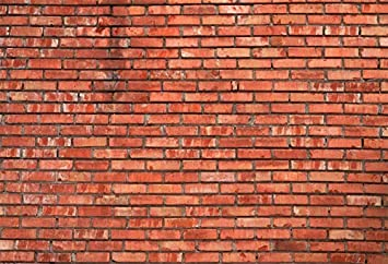 Leowefowa 3D Rendering Grunge Mottled Brick Wall Backdrop 6x6ft Vinyl Dirty Brick Wall Photography Background Child Adult Photo Shoot Event Party Banner Studio Props