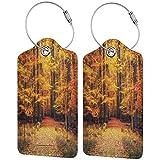 WINCAN Etiquetas para Equipaje,Foto mágica de otoño en el Parque Nacional con Planta de Hoja Viva Tema ecológico de Tierra ecológica,2 Piezas Etiquetas de Equipaje de Viaje Etiquetas