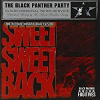 Revolutionary Analysis of Sweet Sweetback